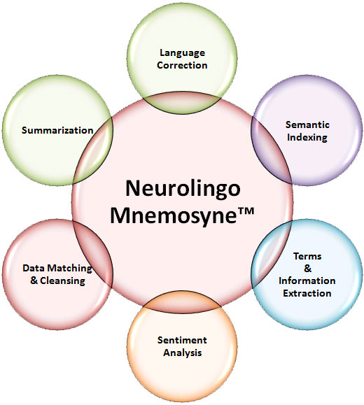 Neurolingo Mnemosyne-TM Functions Diagram - Large